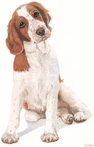 Click to see exclusive dog prints from paintings