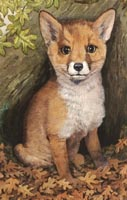 Red Fox print from painting by Isabel Clark